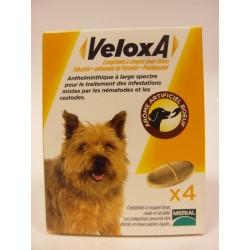 Frontline - VeloxA Chien et Chiot Vermifuge (4 comprimés)